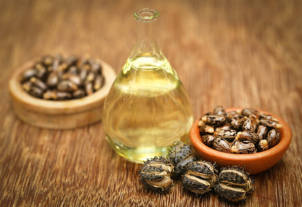 Here's Why You Absolutely Need To Incorporate Castor Oil In Your Beauty  Regime – Lipstiq.com